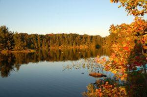 """Ein kanadischer Herbsttag in der Natur. Eine der typischen Szenen in """"Der Duft des Regens"""". Quelle: Astrid Haindl/ pixelio.de"""