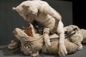 Ist Wolfi jetzt tot oder nicht?! (c) Klaus Zinnecker